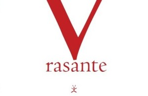 Voo Rasante
