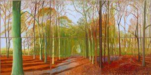 """""""Woldgate Woods, 21, 23 & 29 november 2006"""""""